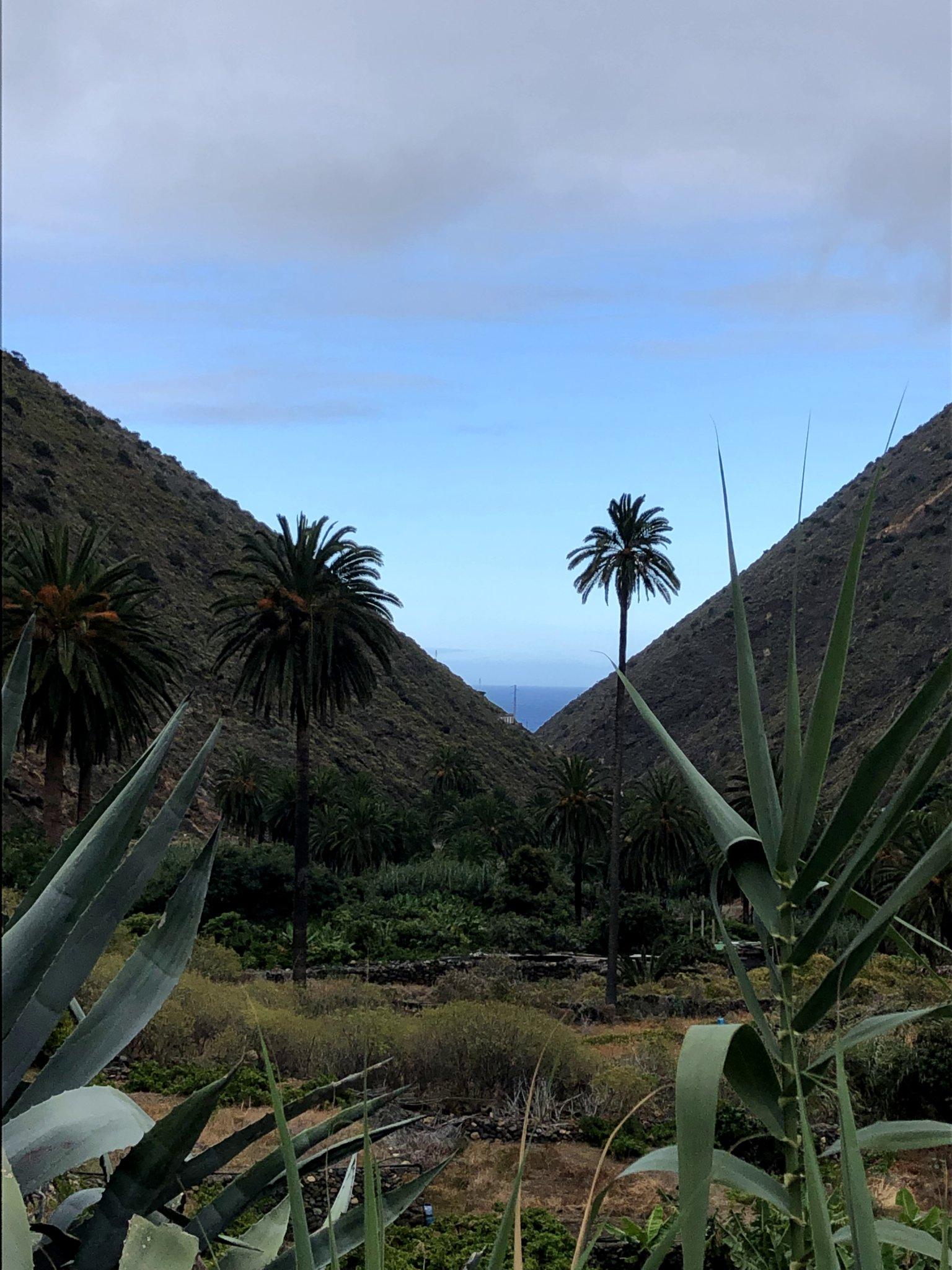 Imagen del mar entre dos montañas en Vallehermoso, La Gomera. Enlace a Wikipedia (Abre en ventana nueva)